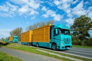 LKW Flotte auf der Straße