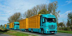 Unsere LKW Flotte